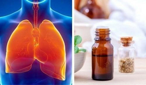 Cómo limpiar el sistema respiratorio con aceite de orégano