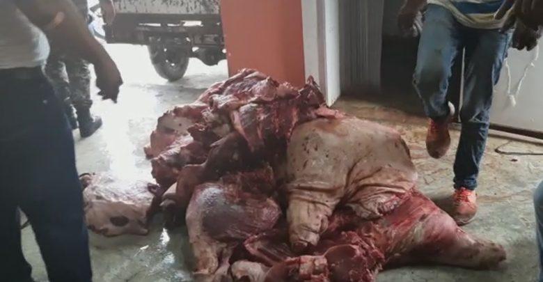 ATENCION :Incautan 15 quintales de carnes descompuestas en Las Matas de Farfán