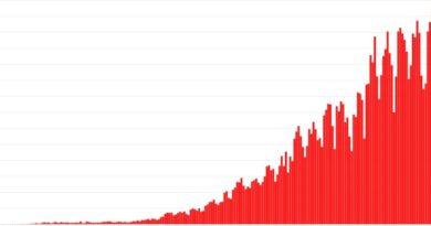 Coronavirus en Argentina: confirmaron 337 muertes y 11.249 contagiados en las últimas 24 horas