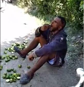 sorprendieron joven robando limones y lo obligaron a comérselos.