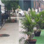 Cientos de restaurantes dominicanos al borde de la quiebra por posible cierre total en otoño