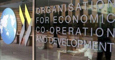 Avanza la OCDE con proyectos para gravar la economía digital