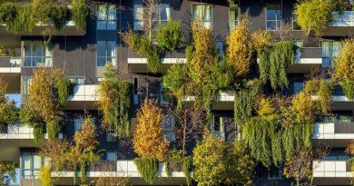 ¿Cómo construir una ciudad sostenible?