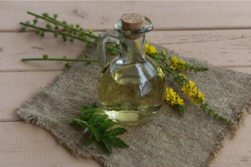 Agrimonia: una planta medicinal que deberías conocer