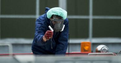 Confirman brotes de gripe aviar en Alemania y Países Bajos