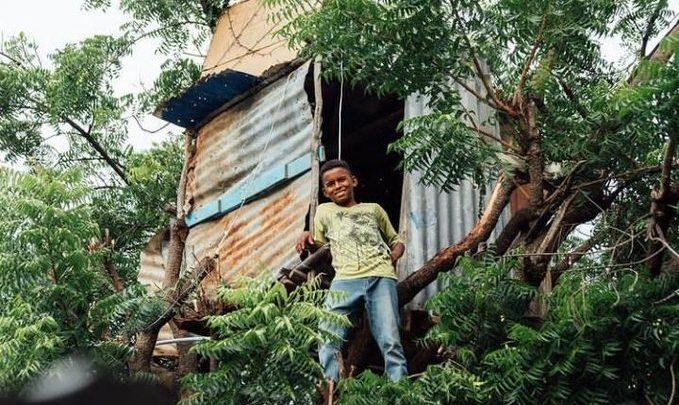 El INVI le construirá una vivienda a menor de 13 años vive en árbol