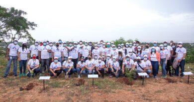 Instituciones del Gabinete de Política Social siembran más de 1200 árboles