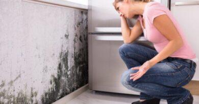 ¿El moho en el hogar causa problemas de salud?