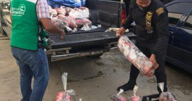 CODOPESCA decomisa 600 libras de pez loro, las cuales fueron donadas al banco de alimentos de PROSOLI