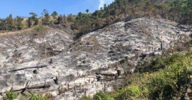 Piden investigar causas de incendio en Ocoa