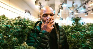 La impactante suma que gana Mike Tyson por mes gracias a la venta de marihuana