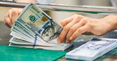 El dólar de Taiwán se aprecia un 6% en el Año de la Rata y mantiene la aduana en 28 yuanes