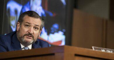 Sí, el senador Ted Cruz recibió $ 300,000 de donantes de derechos de armas, pero no todos de la NRA