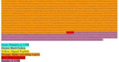 Científicos publican en la web la secuencia de ARN mensajero de la vacuna de Moderna