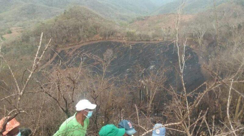Anciano muere calcinado luego de presuntamente incendiar unos árboles en Elías Piña