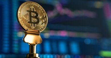 """Bitcoin: """"Zambullirse"""" en el precio de la criptomoneda"""