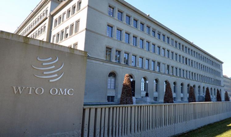OMC busca romper con una cumbre el bloqueo en las patentes de las vacunas
