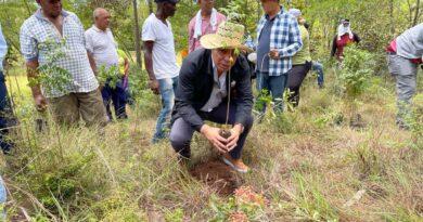 Desarrollo Fronterizo realiza jornada de reforestación para contribuir a preservar el medio ambiente.