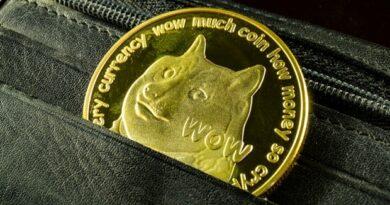 Dogecoin: la moneda de los memes en un nuevo récord histórico