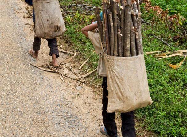 La pandemia ha fomentado el trabajo infantil en Latinoamérica
