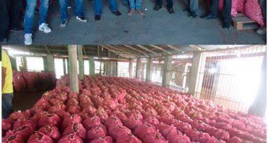 Productores de cebolla de Ocoa y otras provincias denuncian han quebrado por la importación de ese producto