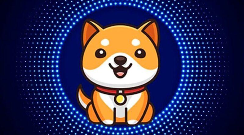 ¿Qué se sabe del Baby Doge, la nueva criptodivisa que se disparó un 228 % en un solo día tras un tuit de Elon Musk?