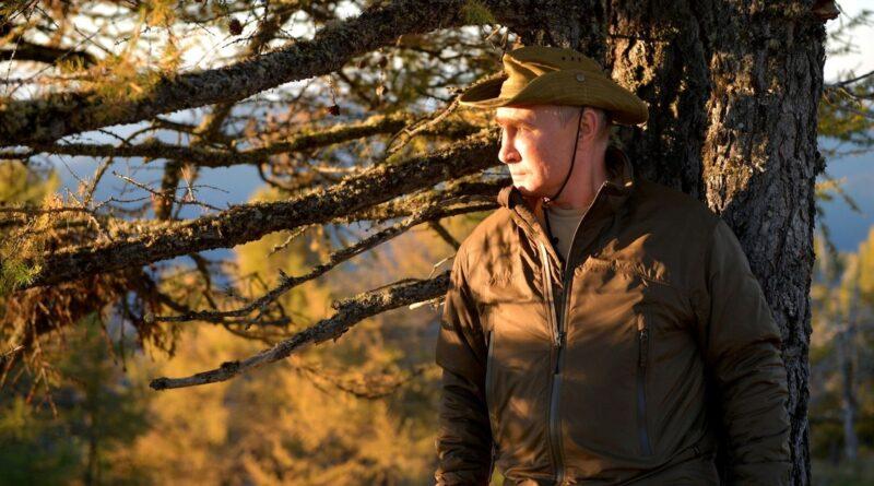 """""""El oso ve que es Putin"""": el presidente de Rusia disfruta de sus vacaciones en la taiga siberiana"""