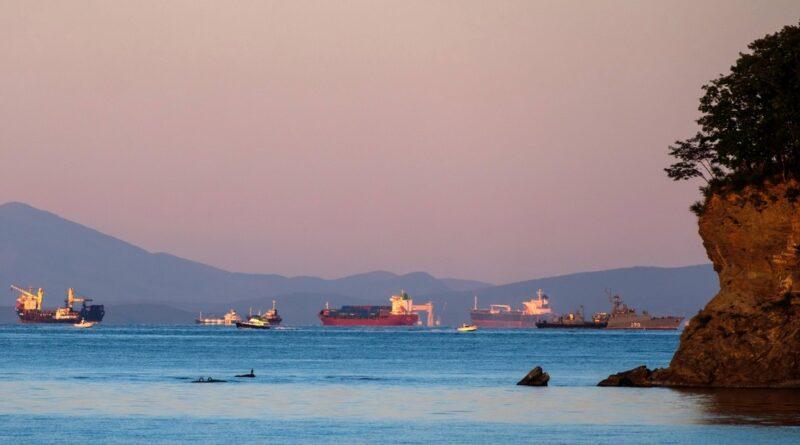Rusia construirá un puerto multifuncional en Vladivostok para promover el desarrollo del Lejano Oriente del país